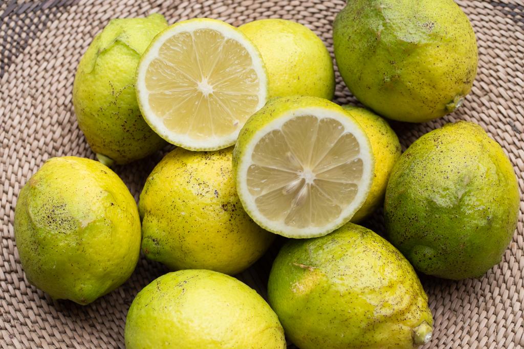 2020シーズンのレモン販売中です