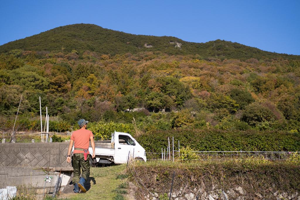 紅葉していく山に囲まれた畑で
