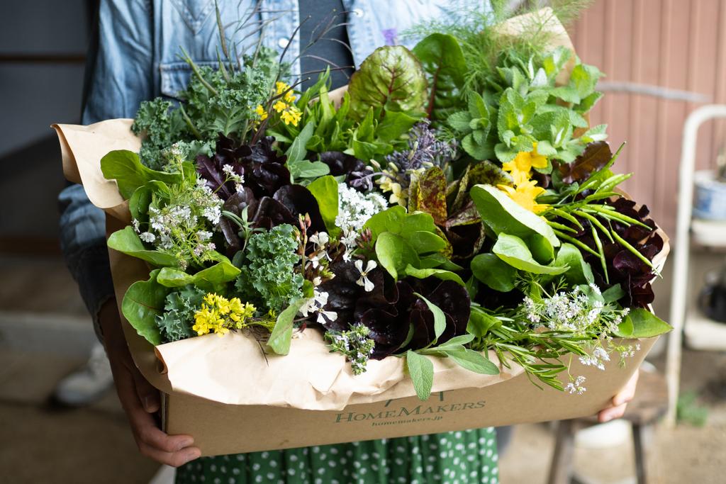 お祝いに贈る、花束みたいな野菜ボックス