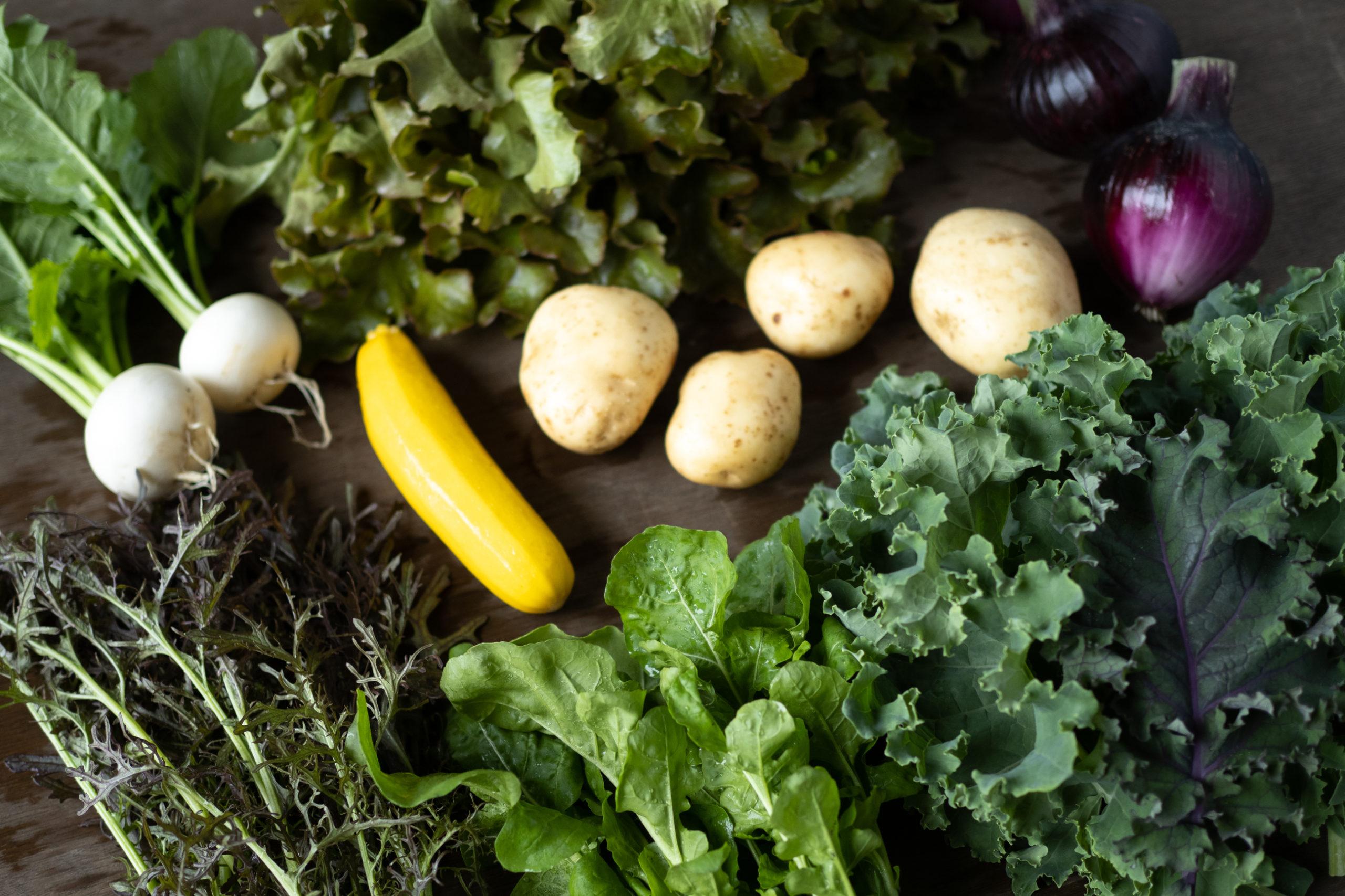 元気な春夏野菜、ヤングコーンやズッキーニ!今週の野菜(5/24 – 5/30)