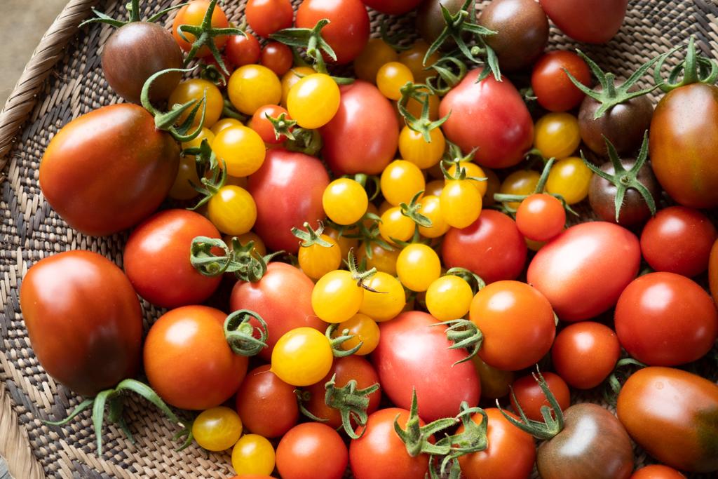 トマトミックス